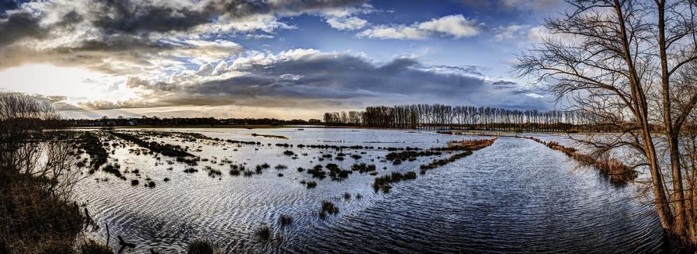 Überflutete Schwingewiesen
